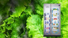 Side By Side Kühlschrank Test Chip : Samsung rs hk sa eg side by side in edelstahl kaufen saturn